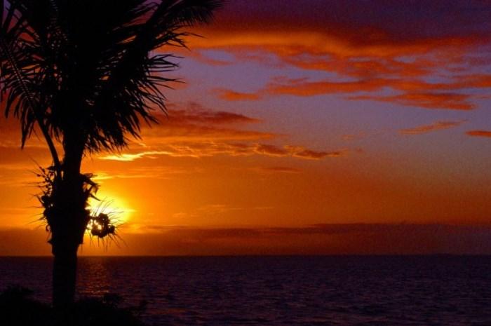 3.2_Florida_Slide_8_700x465
