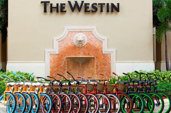 Bicycles_700x465